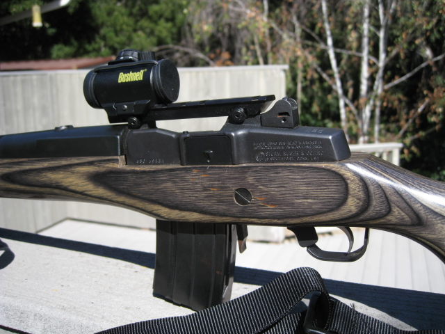 Mini 14 low profile red dot sight recommendation-100464992.jpg
