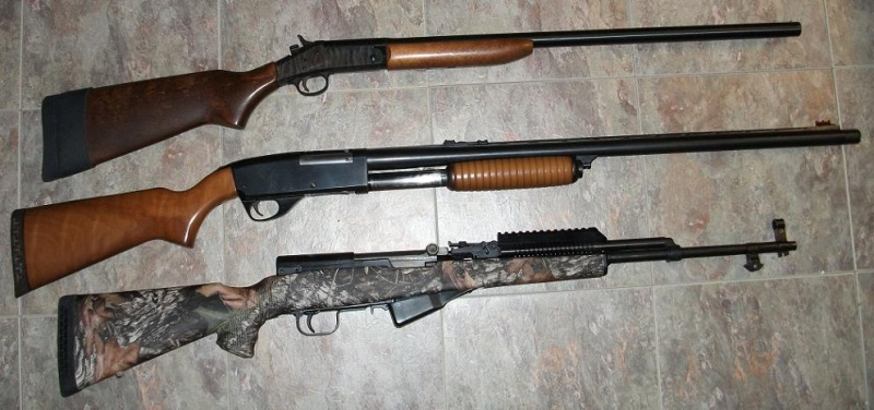 How many members in YOUR SKS Collection?-2-12ga-sks.jpg