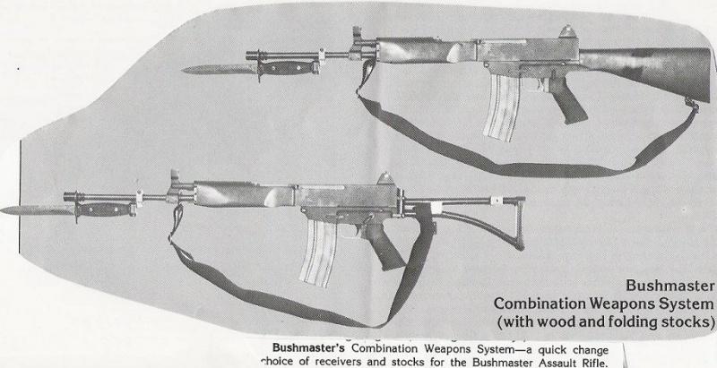Bushmaster rifle gwinn firearms-bushmastercwszk1.jpg