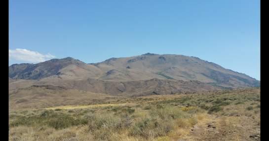 Rugers in the desert-d3.jpg