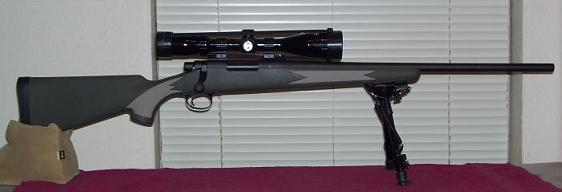 Gallery Forum info-remington-700.jpg